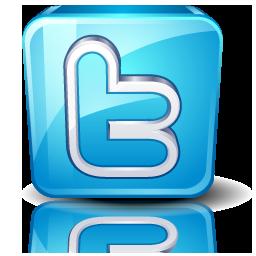 Twitter-high-detail-256